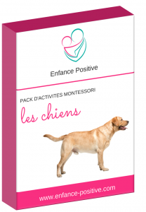 images produits chiens