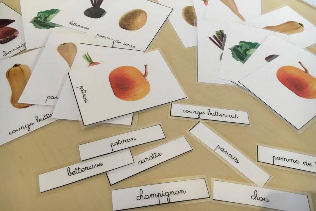 Images en paire légumes d'automne