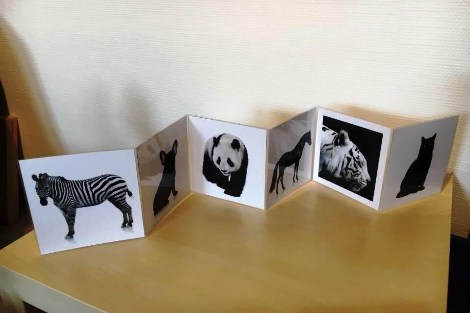 activit s montessori pour b b noir et blanc. Black Bedroom Furniture Sets. Home Design Ideas