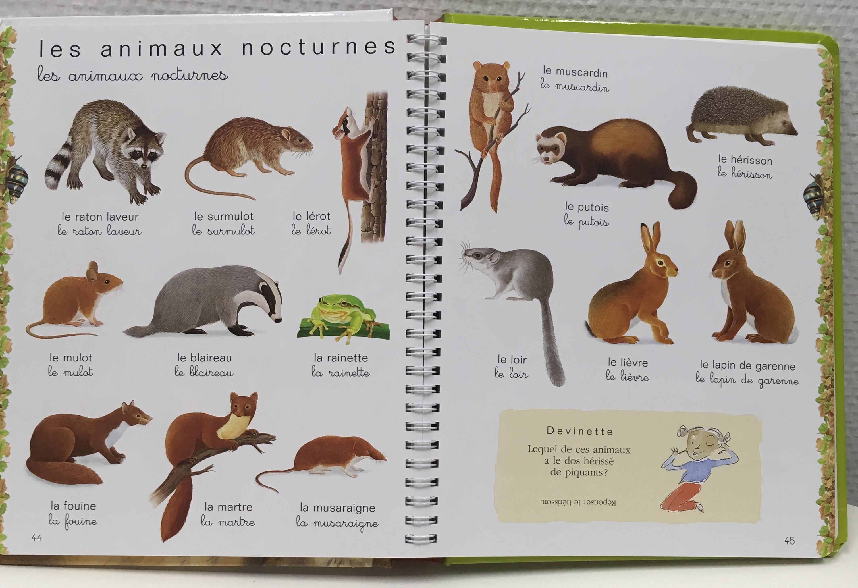 Paniers d'animaux Montessori | Enfance Positive