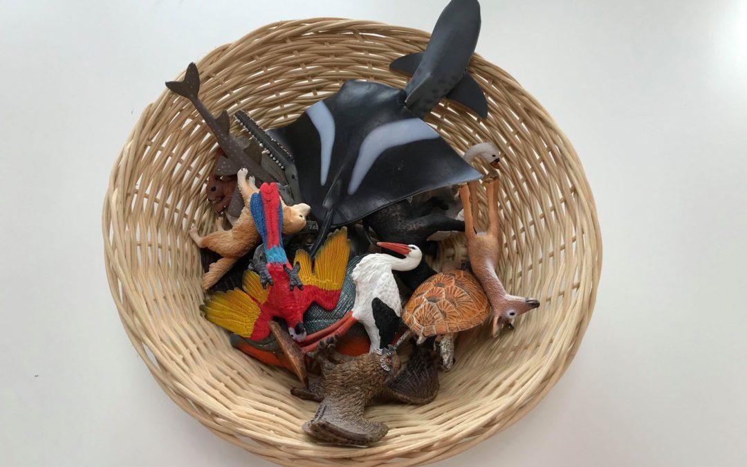 Paniers d'animaux Montessori