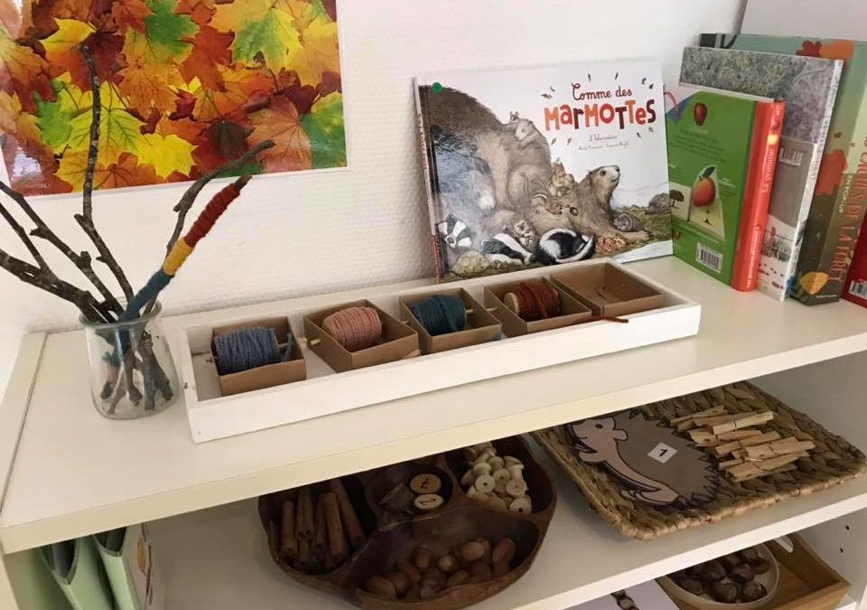 Notre étagère thématique d'automne