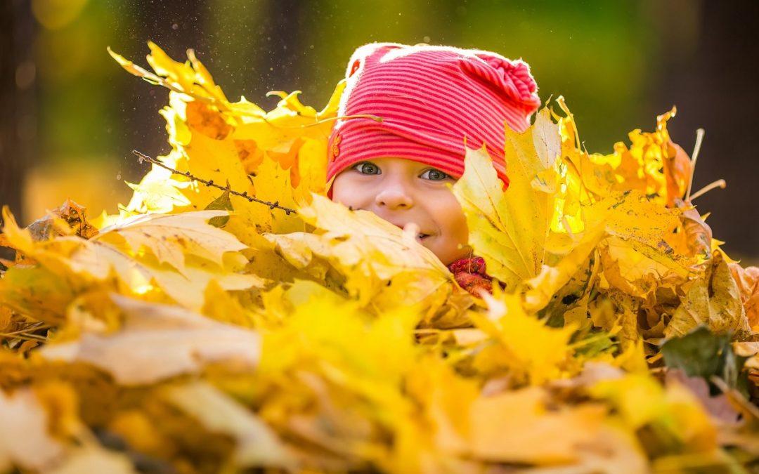 Fêter l'automne avec Waldorf